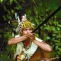 Borneo Indepth - Thumbnail