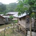 Typical Longhouse Village - Thumbnail